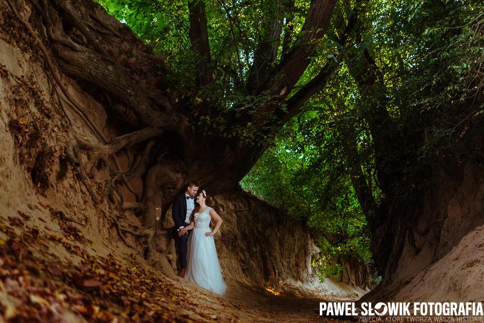 Sesja ślubna w wąwozie