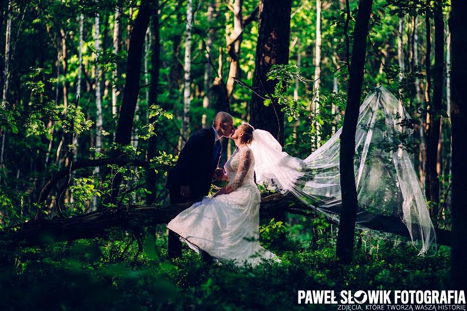 leśna sesja zdjęciowa