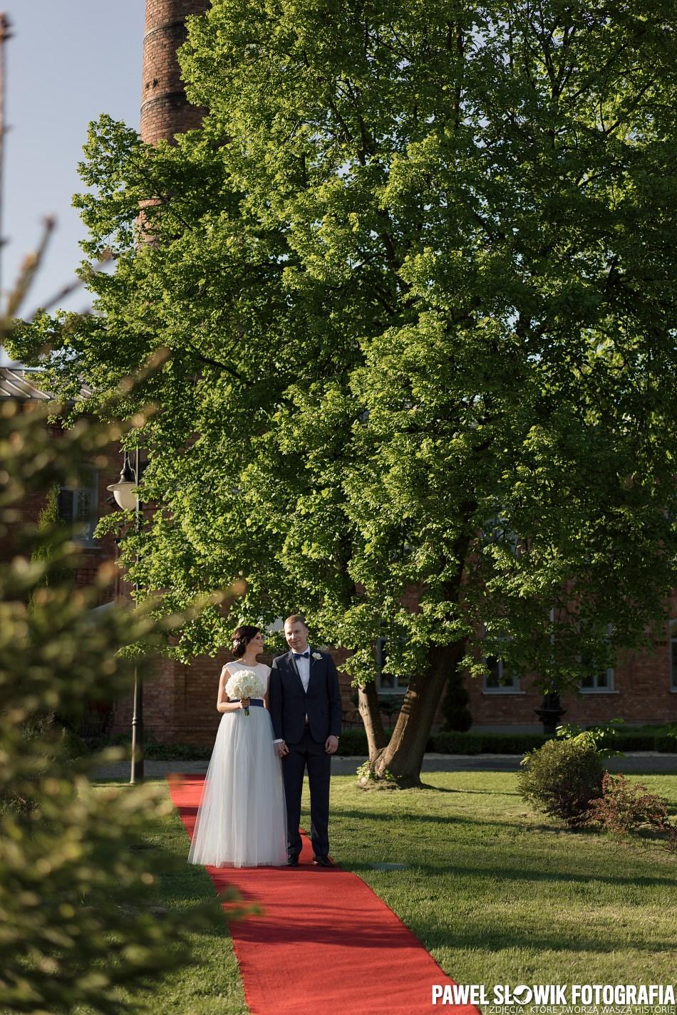 fotograf na zdjęcia ślubne w plenerze